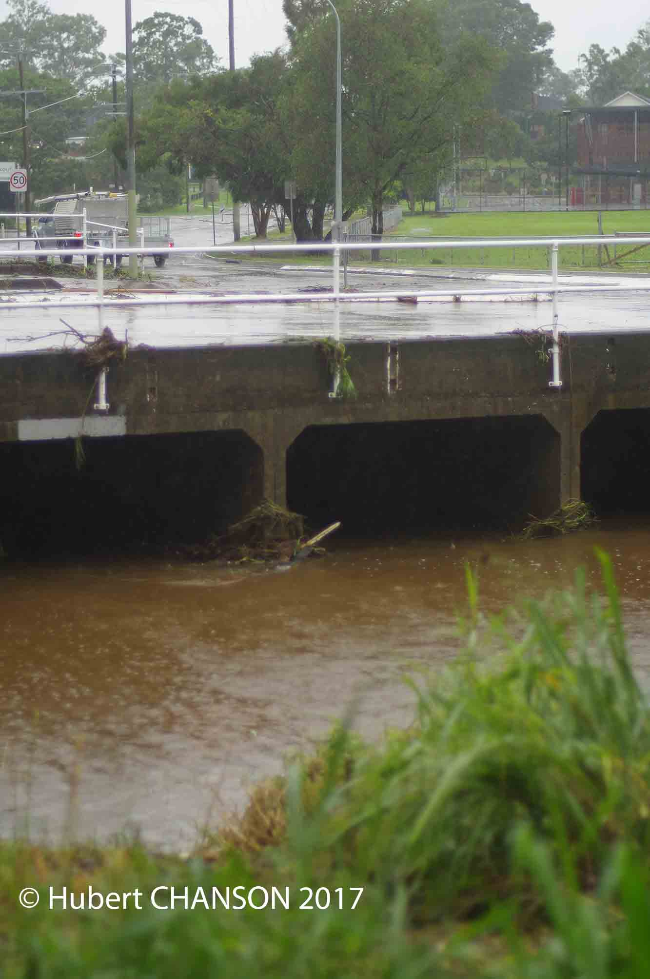 Upstream fish passage in box culverts: how do fish and
